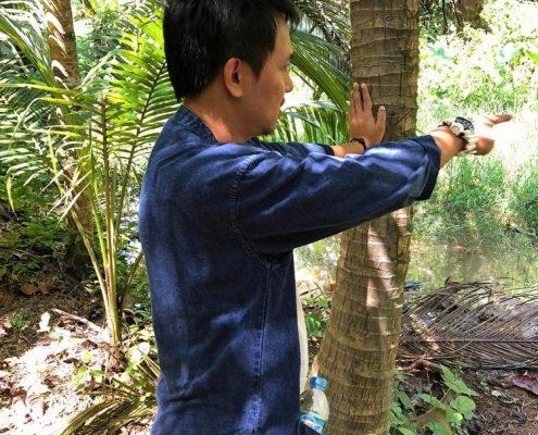 Ban Ton Sae