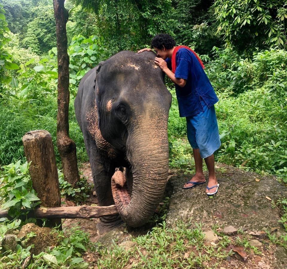 Elephant carer