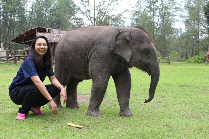 elephant welfare