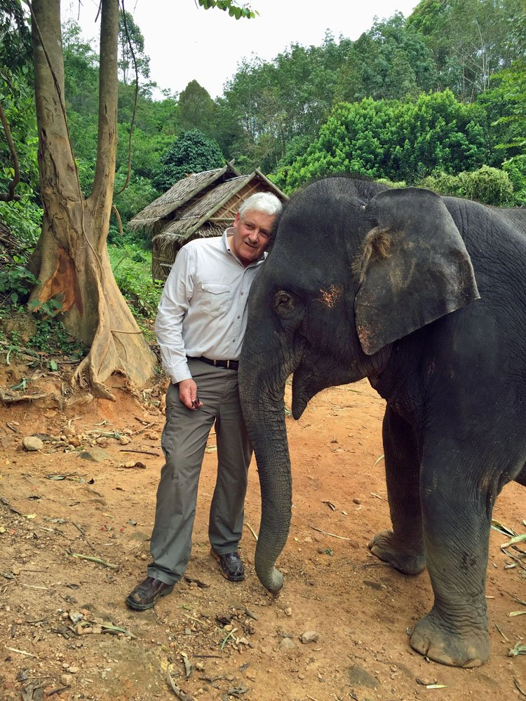 Saving Thailand's elephants