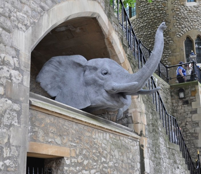 elephant in the tower