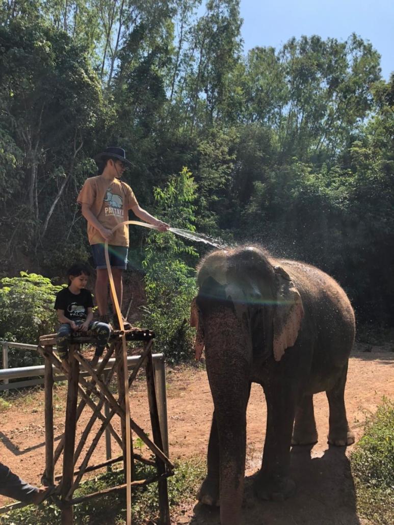 abseiling elephants